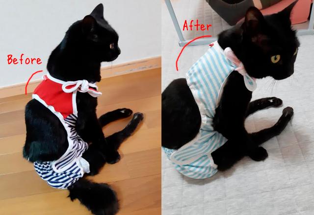 黒猫 半身不随 猫用おむつカバー
